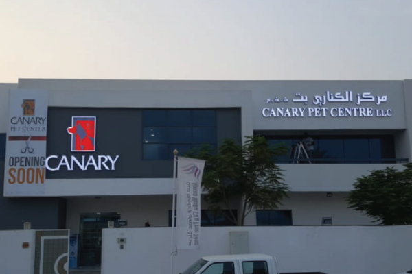 canary-01-1024x577